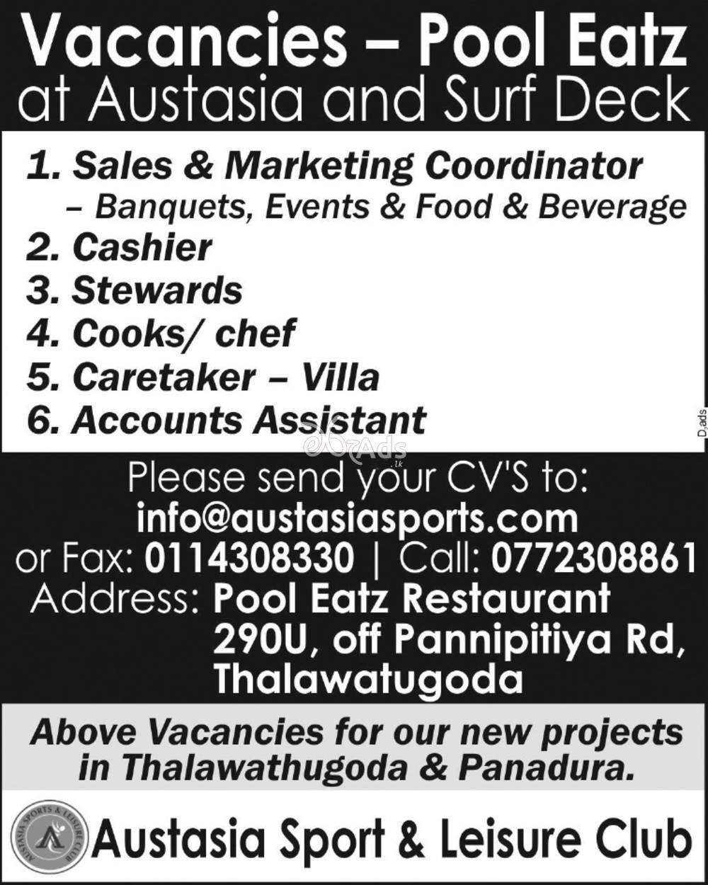 Sales & Marketing Coordinator, Cashier, Stewards, Cooks/ Chef, Caretaker, Accounts Assistant