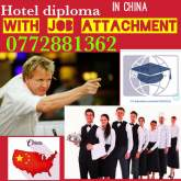 A Job with Education in China