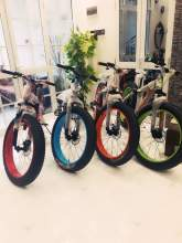 Brand New Fat Tyre Bicycles for Adults