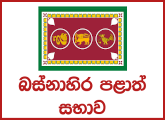 Investigation Officer - Department of Local Government of Western Provincial Council Public Service