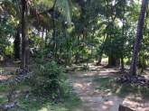 Land for sale with house