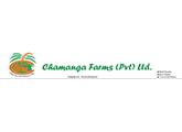 Computer Operator - Chamanga Farms (Pvt) Ltd