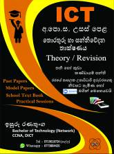 Advanced Level ICT Class - Theory/ Revision (Grade 12, 13)