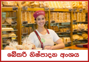 Vacancies for Bakery Bass,Chef, Helper, Cashier, Sales Assistant